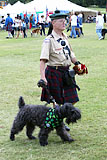 Celtic Dog Parade